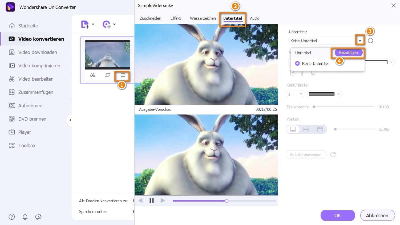 Importieren von Untertiteln mit dem Untertitel-Tool